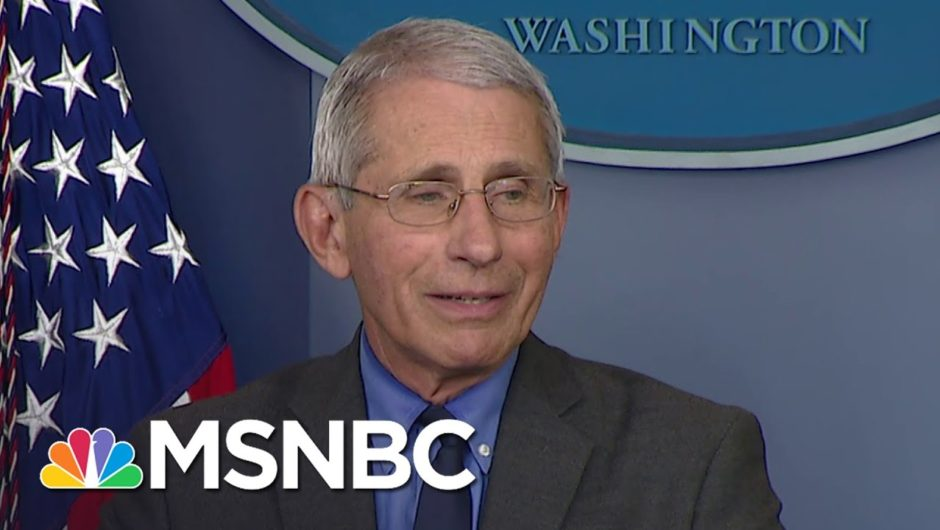 'Wrong Choice Of Words': Fauci Walks Back Criticism Of Trump Coronavirus Response | MSNBC