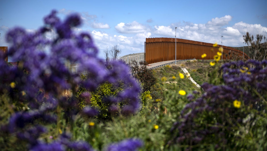CDC extends US border crackdown over coronavirus fears