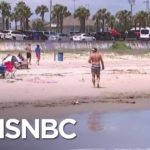 Thousands Flock To Reopened Texas Beaches Despite Rising COVID-19 Death Toll | MSNBC