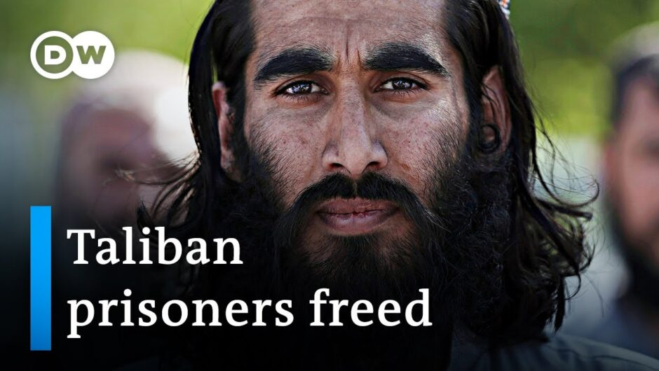Afghan government frees hundreds of Taliban prisoners   DW News