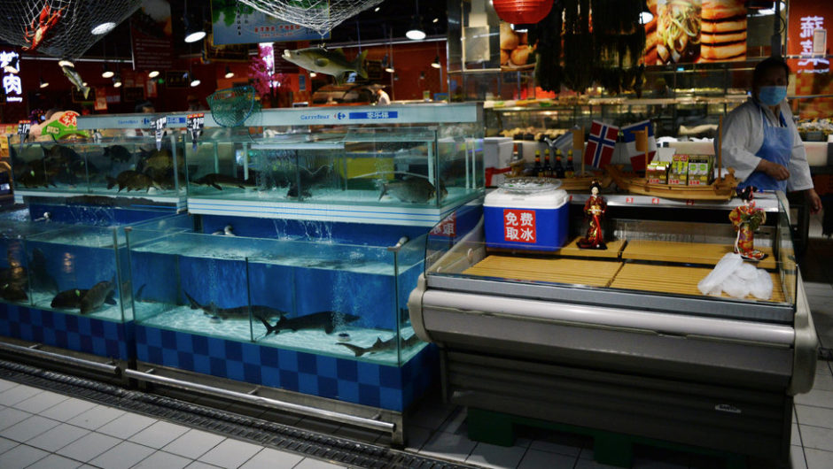 Coronavirus Fears in China Find a New Target: Salmon