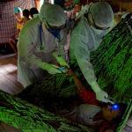 Coronavirus cases spike in Latin America: WHO