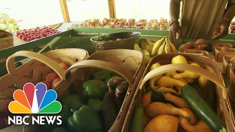 Coronavirus Pandemic Is Making America's Food Deserts Worse   NBC Nightly News