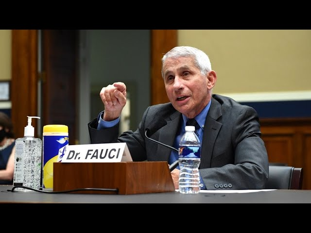 Fauci: Seeing 'Disturbing Surge' of Covid-19 Infections