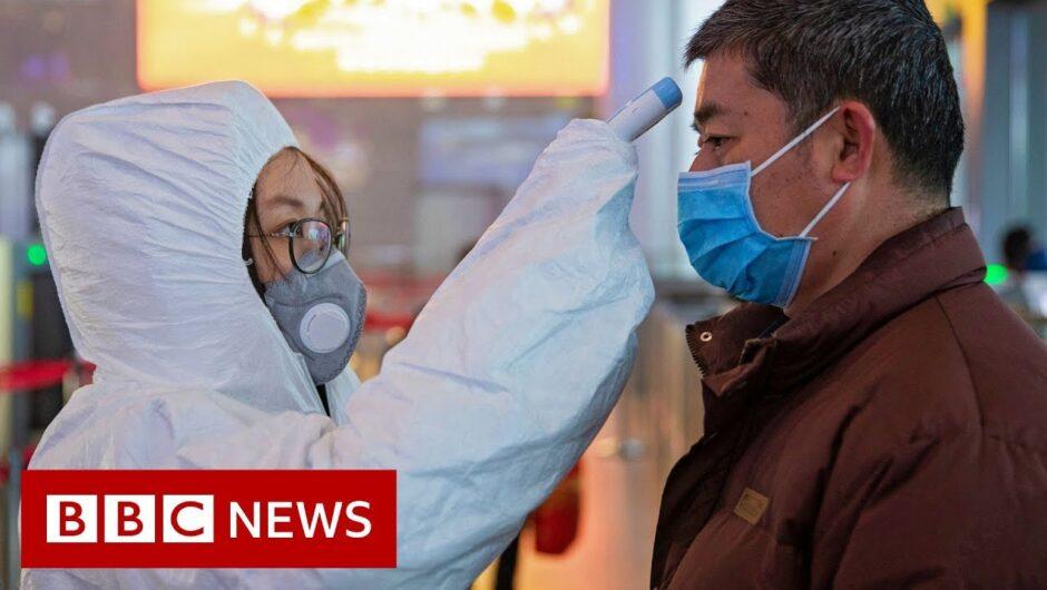 Scientists search for coronavirus vaccine – BBC News