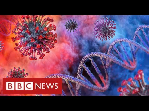 "Coronavirus will remain a threat ""for a very long time"" warn leading scientists – BBC News"