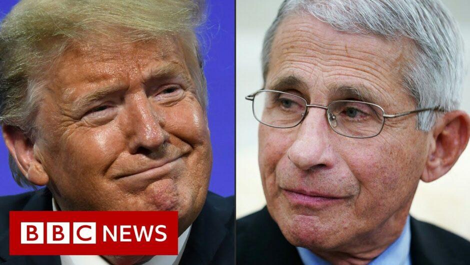Coronavirus: White House targets US disease chief Dr Anthony Fauci – BBC News