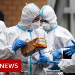 Coronavirus updates from around the world – BBC News
