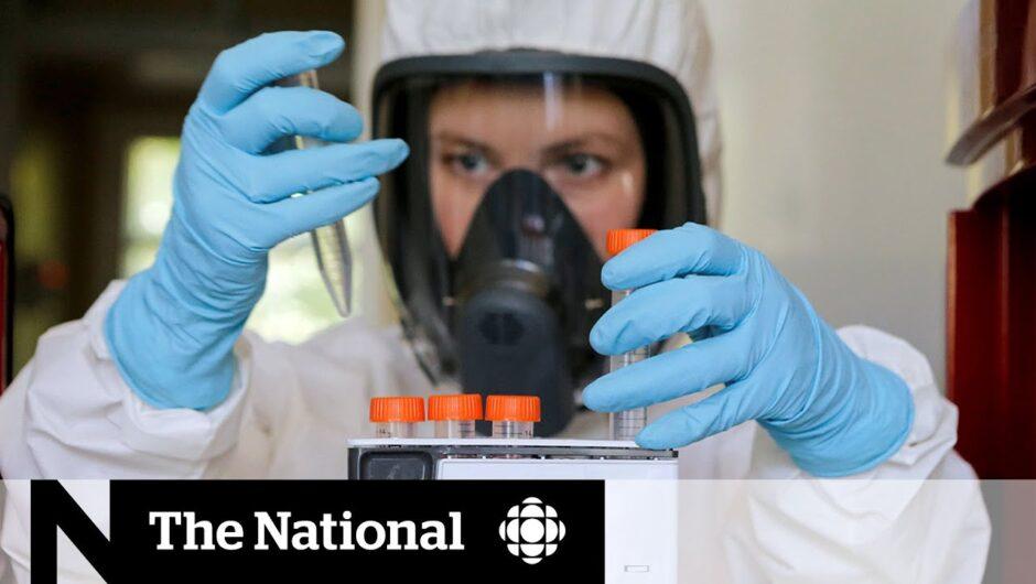 Doubts surround Russia's coronavirus vaccine