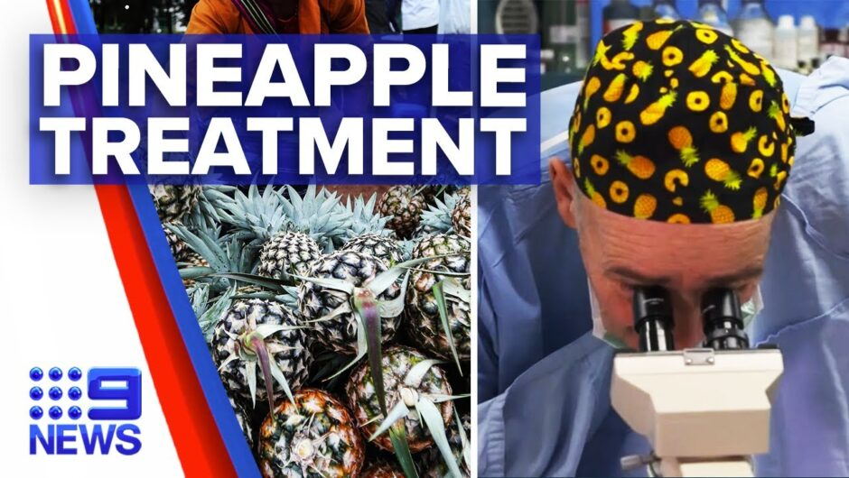 Coronavirus: Pineapple trialled for COVID-19 treatment | 9 News Australia