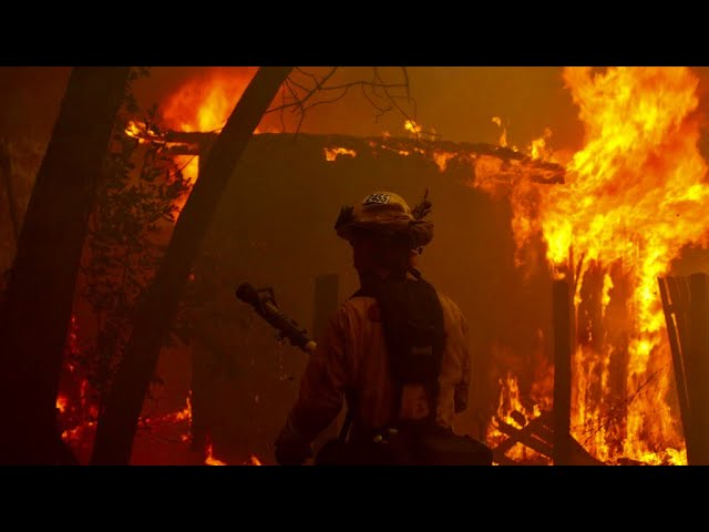 California, coronavirus and wildfires: State is devastated as fires continue to burn amid COVID-19