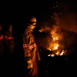 Brazil Pantanal Scorched by Fires