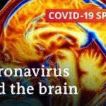 Can the coronavirus cause permanent brain damage? | COVID-19 Special