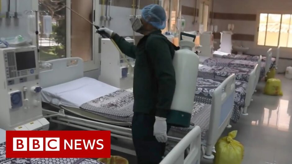 Coronavirus in Egypt: 'The supervising doctor has tested positive' – BBC News