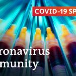 Coronavirus immunity: What do we know? | COVID-19 Special