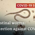 Coronavirus: Are parasitic worms responsible for low fatality rates in Africa? | COVID-19 Special