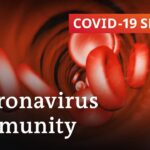 How long does immunity against the coronavirus last? | COVID-19 Special