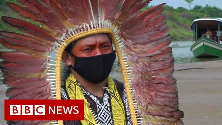 Amazon rainforest: 'Paying the price for disrespecting nature' – BBC News