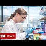 Covid-19: Oxford vaccine proves highly effective – BBC News