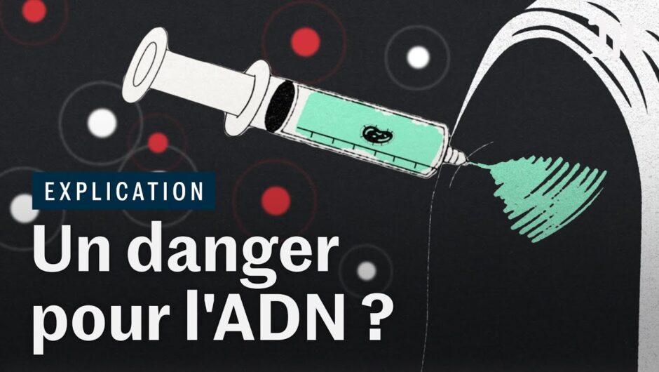 Covid-19 : le vaccin à ARN messager risque-t-il de modifier votre ADN ?