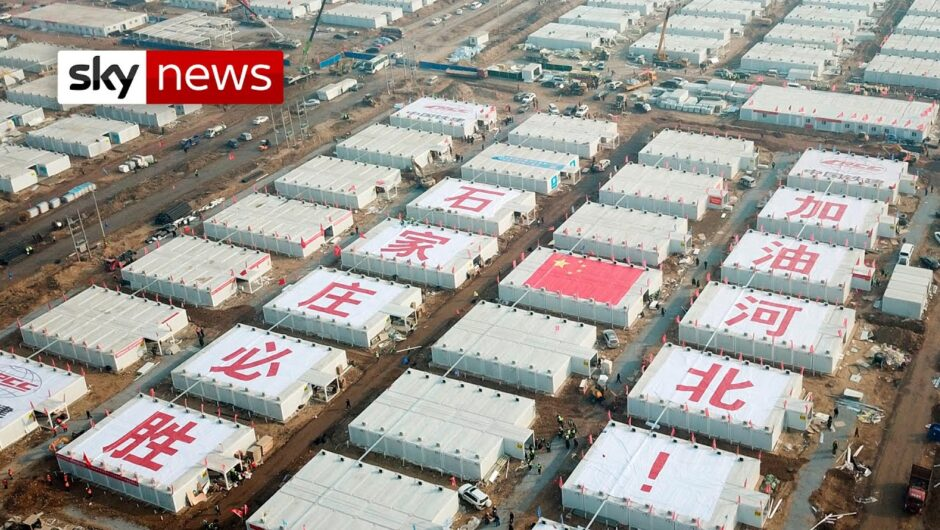 COVID-19: China attempts to limit outbreak with major controls