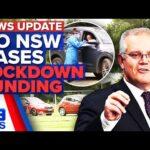 No new COVID-19 cases for NSW, lockdown funding announced   Coronavirus   9 News Australia