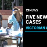 Melbourne Delta COVID-19 variant cluster grows as vaccination blitz extended | ABC News