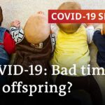 Baby boom or baby bust?   COVID-19 Special